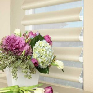 Hunter Douglas Pirouette Window Shadings